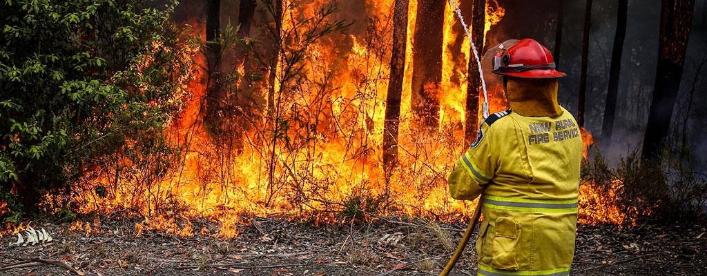 firefighter in bushfire